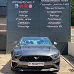 DB Glass Mustang